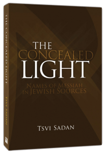 The Concealed Light by Tsvi Sadan